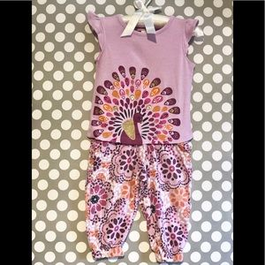 Gymboree Toddler Girl's Outfit